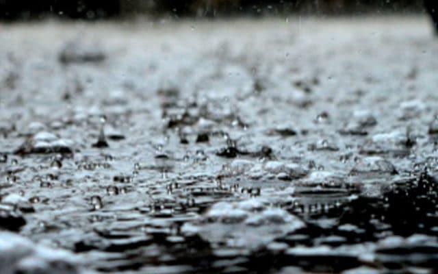 backyard-drainage-system-los-angeles